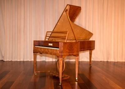 Fritz fortepiano Kobald zijaanzicht